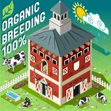Isometric Cowshed Organic Breeding Stock Photo