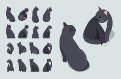 Isometric czarny siedzący kot Zdjęcia Royalty Free