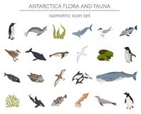 Isometric 3d Antarctica flora and fauna map elements. Animals, b. Isometric 3d Antarctica flora and fauna elements. Animals, birds and sea life. Build your own royalty free illustration