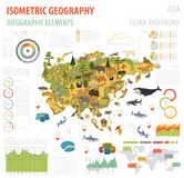 Isometric 3d Asian flora and fauna map constructor elements. Ani. Mals, birds and sea life isolated on white big set. Build your own geography infographics Royalty Free Stock Photos