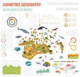 Isometric 3d Australia, Oceania fauny i flory i kartografują elementy royalty ilustracja