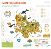 Isometric 3d European flora and fauna map constructor elements. Animals, birds and sea life isolated on white big set. Build your own geography infographics Royalty Free Stock Photos