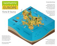 Isometric 3d European flora and fauna map constructor elements. Animals, birds and sea life isolated on white big set. Build your own geography infographics Stock Photography