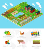 Isometric 3d Icon Flat Farm Agriculture Royalty Free Stock Photos
