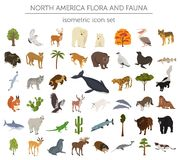 Isometric 3d North America flora and fauna elements. Animals, bi Stock Photos