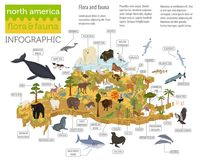 Isometric 3d North America flora and fauna map elements. Animals Stock Photos