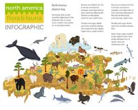 Isometric 3d North America flora and fauna map elements. Animals Stock Images