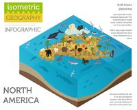 Isometric 3d North America flora and fauna map elements. Animals Stock Photo