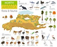 Isometric 3d North America flora and fauna map elements. Animals. Birds and sea life. Build your own geography infographics collection. Vector illustration Royalty Free Stock Photos