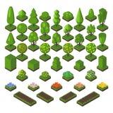 Isometric drzewo setu zieleni natury wektoru lasowa ilustracja ilustracja wektor
