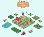 Isometric Farm Elements Set. With house windmill barn trees fields vegetables flowers animals tractor greenhouse hay stacks  vector illustration Royalty Free Stock Images
