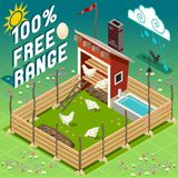 Isometric Henhouse Free Range Farming Stock Photos