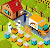 Isometric Honey Bee Apiary Beekeeper Design Flat Royalty Free Stock Image