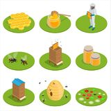 Isometric Honey isolated icons set with bees, beekeeper works on an apiary, hive, bee, honeycomb. Vector illustration.  vector illustration
