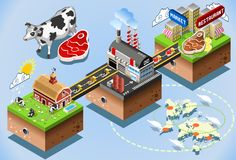Isometric Infographic Beef Distribution Chain Royalty Free Stock Photography