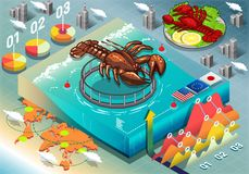 Isometric Infographic of Lobster Breeding Royalty Free Stock Photos