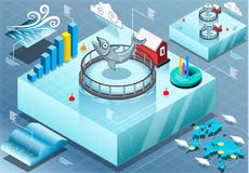 Isometric Infographic of Sea Farmed Fish. Detailed illustration of a Isometric Infographic of Sea Farmed Fish Stock Photos