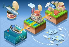 Isometric Infographic Tuna Distribution Chain. Fish Industry - Isometric Infographic Tuna Large Scale Retail Trade - From Fishing to Consumer Royalty Free Stock Images