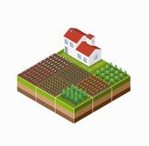 Isometric landscape Royalty Free Stock Photography
