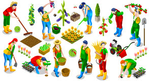 Isometric People Farmer 3D Icon Collection Vector Illustration. Isometric farmer people 3D icon set collection vector illustration. Farm field scene seed plant Stock Images