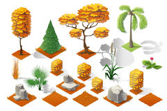 Isometric plants forest collection set. Fall trees and stones. Stock Photos