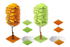 Isometric plants forest collection set. Fall trees and stones. Royalty Free Stock Photography