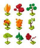 Isometric polygonal trees. Vector 3D trees isolate on white background vector illustration