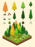 Isometric Proste rośliny Ustawiać - Borealna Lasowa jesień Obraz Stock