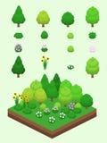 Isometric Proste rośliny Ustawiać - lato rośliny Obrazy Stock