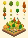 Isometric Proste rośliny Ustawiać - Temperate lasu Biome Obrazy Royalty Free