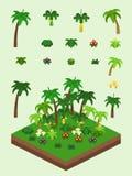 Isometric Proste rośliny Ustawiać - Tropikalny las Zdjęcia Stock