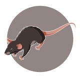 Isometric Rat Icon Royalty Free Stock Photography