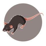 Isometric rat icon Royalty Free Stock Photography