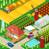 Isometric Rural Farm Agricultural Field with Greenhouse and Windmill. Vector 3d flat illustration Stock Image