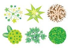 Isometric set drzewa i rośliny ilustracji