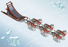 Isometric sled dogs in Front View on Ice Royalty Free Stock Images