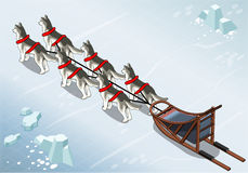 Isometric sled dogs in Rear View on Ice Stock Photos