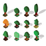 Isometric Tree. Set of Different Trees with Shade in Isometric P Royalty Free Stock Photo