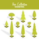 Isometric vector tree set Stock Photos