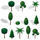 Isometric vector tree set. Royalty Free Stock Photography