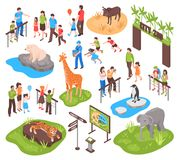 Isometric Zoo Set. City zoo isometric set with children and their parents watching animals and photographing them isolated vector illustration stock illustration