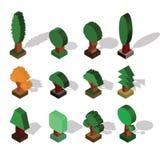 Isometrische boom Reeks Verschillende Bomen met Schaduw in Isometrisch P stock illustratie