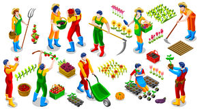 Isometrische Ikonen-Sammlungs-Vektor-Illustration Landwirt-People 3D Stockbilder