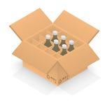 Isometrische Pappschachtel mit Gruppenflaschen Lizenzfreie Stockfotos