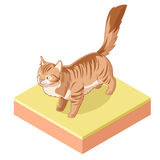 Isometrisk stående kattsymbol Royaltyfri Bild