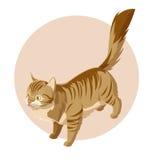 Isometrisk stående kattsymbol Fotografering för Bildbyråer