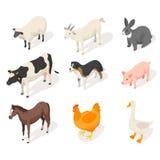 Isometrisk uppsättning för vektor 3d av lantgårddjur vektor illustrationer