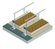 Isometriskt modernt smart industriellt växthus Robotar för konstgjord intelligens i jordbruks- Organisk mat, jordbruk vektor illustrationer