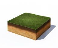 Isometriskt tvärsnitt av jordning med gräs Royaltyfri Fotografi
