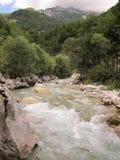 Isonzo wiosna Zdjęcia Stock